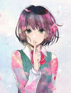 Capa do anime Kuzu no Honkai
